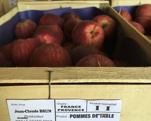 pommes de table frais d'Eurofruit